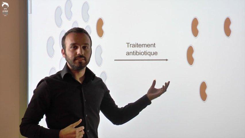 Variation du génome et apparitions de résistances aux antibiotiques chez les bactéries