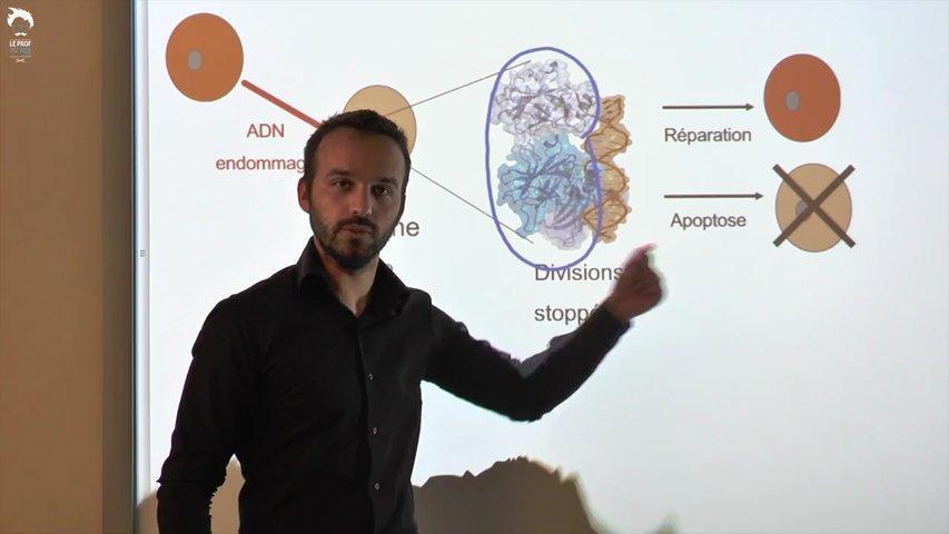 Modification du génome et processus de cancérisation