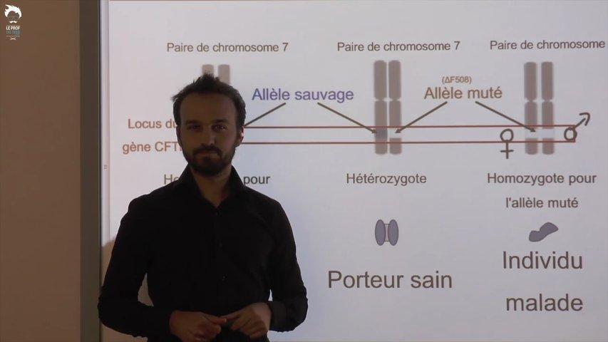 Déterminer les risques liés à une maladie génétique