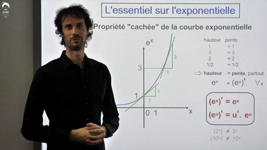 Exponentielle : l