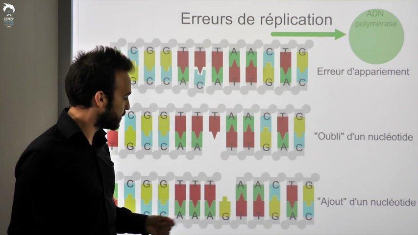 Les modifications de l'ADN et les agents mutagènes