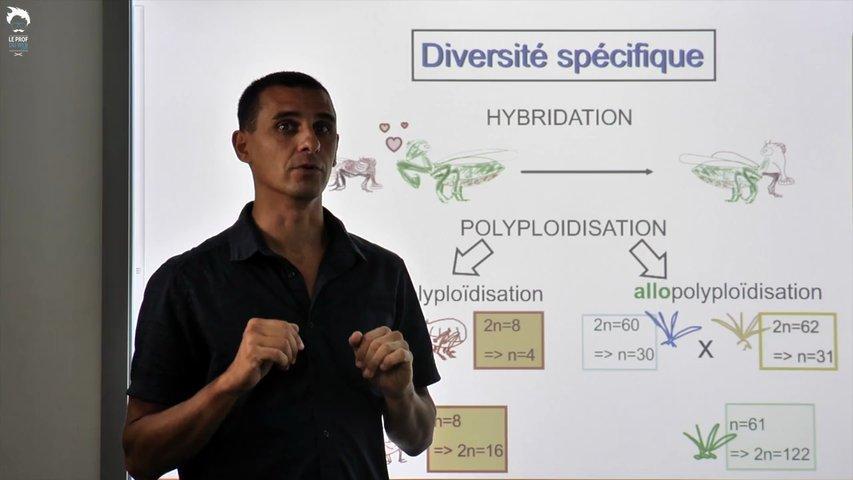 La diversité génétique
