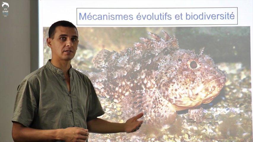 Le mécanisme d'évolution et la biodiversité