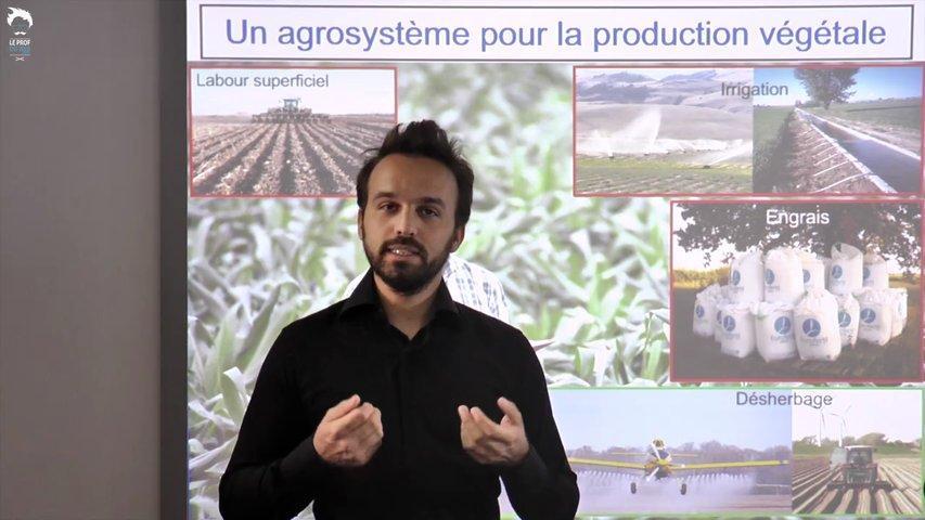 Le fonctionnement d'un agrosystème pour la production végétale