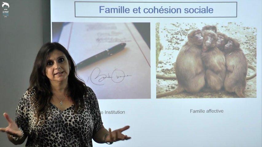 Famille et cohésion sociale