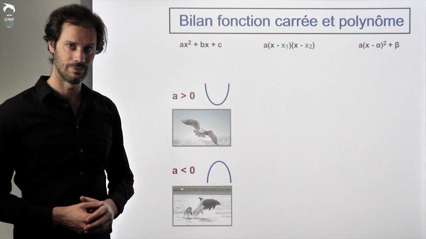 Bilan fonction carrée et polynômes