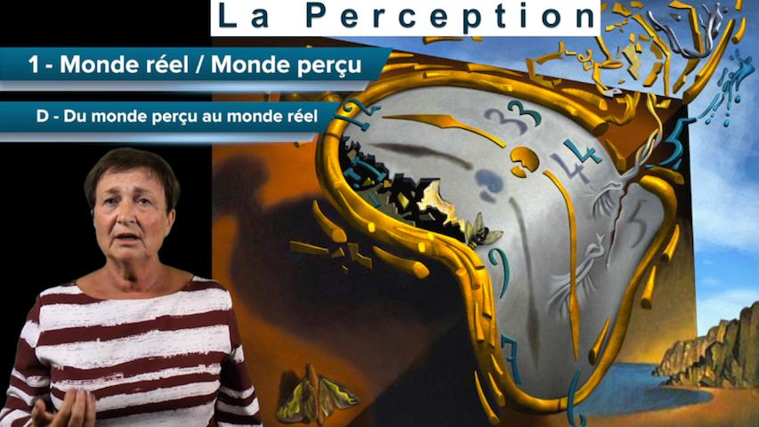 La perception : Monde réel / Monde perçu