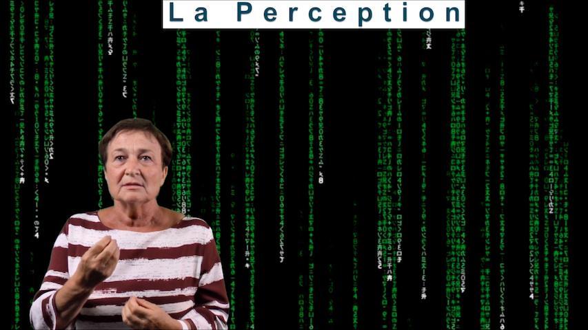 Perception et sensation