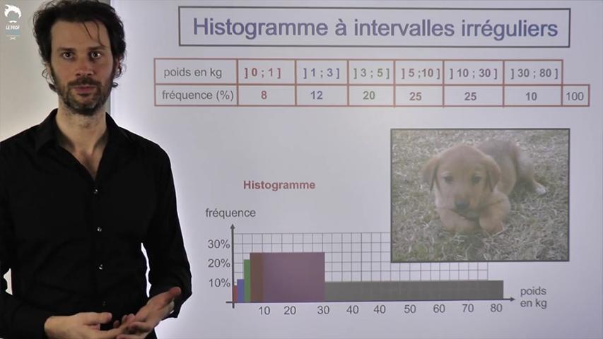 Histogramme à intervalles irréguliers